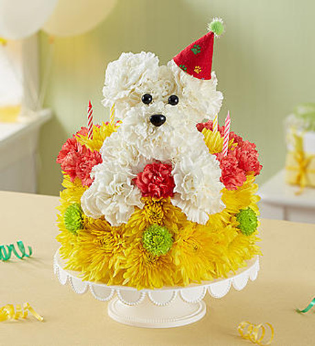Birthday Wishes Flower Cake Pupcake EXCLUSIVE Celebrate a loyal friend on their birthday with our unique and whimsical Pupcake! Crafted of white carnations and topped with a festive party hat, our adorable pup pops out from our cake of fresh vibrant blooms. Served up on a pedestal stand and accented with candles, it's an unforgettable way to bring fun to their celebration.