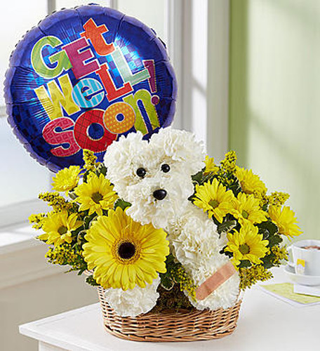 Sick As a Dog EXCLUSIVE Know someone having a ruff' time? Our flower pup is the perfect pick-me-up for anyone under the weather. Handcrafted with bright white blooms and yellow accents, he comes with a Band-Aid to cover his boo-boo and a colorful Get Well balloon to cheer them right up with happy healing wishes.