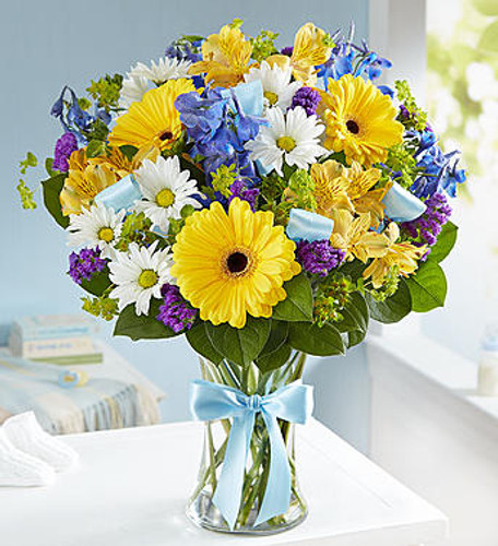 Sweet Baby Boy Arrangement Celebrate a new baby boy with a precious hand-designed arrangement. Our happy bouquet of fresh blue, yellow and white blooms in a glass vase tied with blue ribbon, is a beautiful and thoughtful way to congratulate the proud parents on their little bundle of joy.