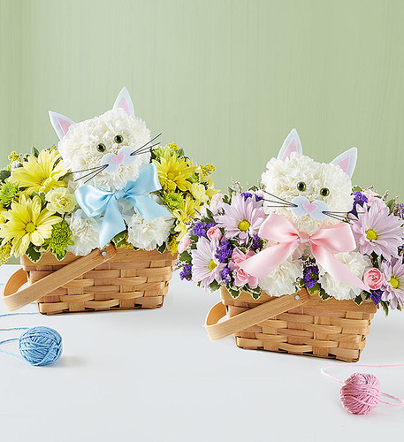 "Fabulous Feline Boy or Girl Fabulous Feline is a whole lot of fun "" and helps say congrats on your new little one! Fresh white carnations are expertly crafted in the shape of an adorable cat, surrounded by a mix of colorful blooms and nestled inside a charming basket. Choose baby girl' or baby boy' for a sweet, thoughtful gift for the new parents."