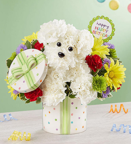 Party Pooch™ Happy Birthday Flowers Bouquet