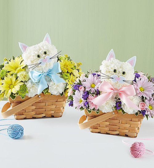 """Fabulous Feline Boy or Girl Fabulous Feline is a whole lot of fun """" and helps say congrats on your new little one! Fresh white carnations are expertly crafted in the shape of an adorable cat, surrounded by a mix of colorful blooms and nestled inside a charming basket. Choose baby girl' or baby boy' for a sweet, thoughtful gift for the new parents."""