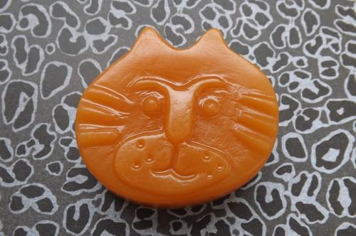 Mango Papaya cat