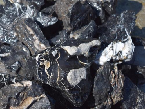 15lb Black Sieryu Stone