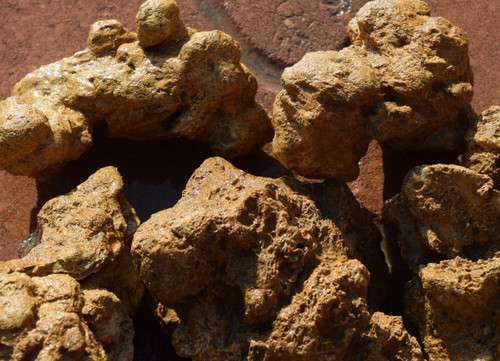 10lb Golden Stone