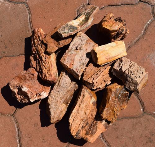 10lb Burmese Petrified Wood