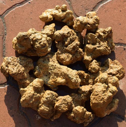 5lb Golden Stone
