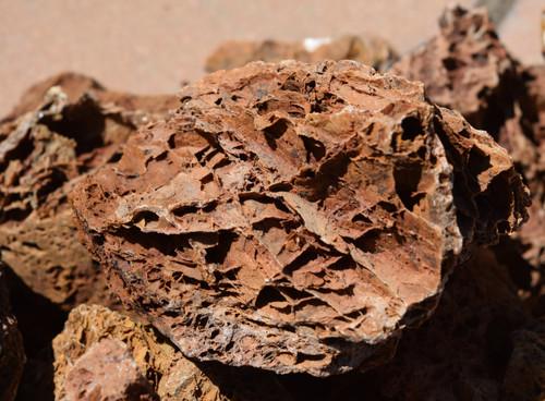 5lb Maple Leaf Stone