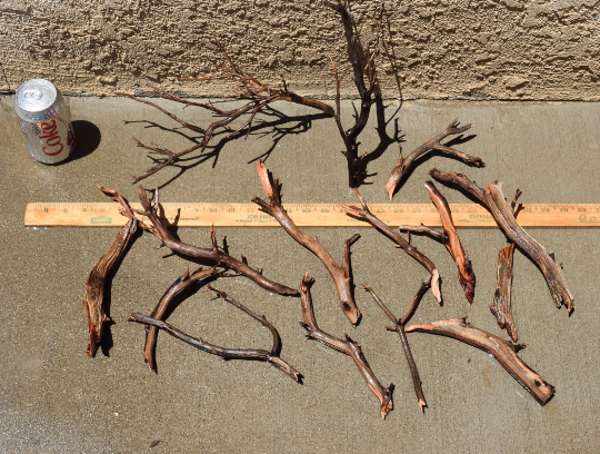 nano driftwood group 10 pieces manzanita driftwood com