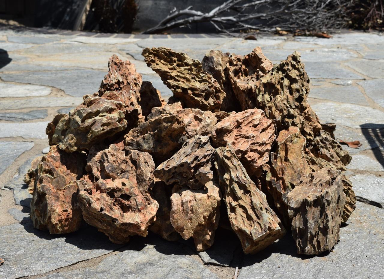 20lb dragon stone manzanita driftwood com