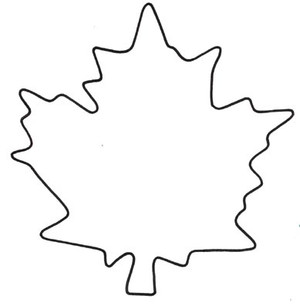 MAPLE LEAF A LG
