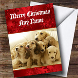 Dachshund Dogs Customised Christmas Card