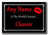Cleaner World's Sexiest Jumbo Magnet