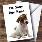 Sad Jack Russell Puppy Customised Sorry Card