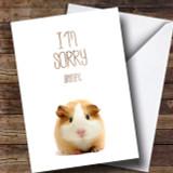 Cute Guinea Pig Sorry Customised Card