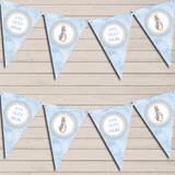 Baby Blue Peter Rabbit Children's Birthday Bunting
