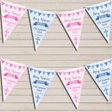 Blue Pink Boy Girl Twins Watercolour Banner Baptism Day Christening Bunting