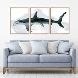 Hammerhead Shark Watercolour Set Of 3 Wall Art Home Decor Picture Framed Prints