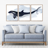 Orca Killer Whale Watercolour Set Of 3 Wall Art Home Decor Picture Framed Prints