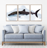 Tiger Shark Watercolour Set Of 3 Wall Art Home Decor Picture Framed Prints