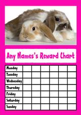 Pink Rabbits Star Sticker Reward Chart