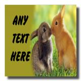 Kissing Rabbits Coaster