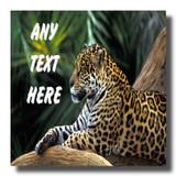 Jaguar Coaster