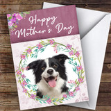Border Collie Dog Traditional Animal Customised Mother's Day Card