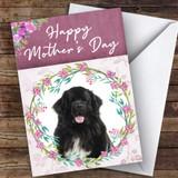 Newfoundland Dog Traditional Animal Customised Mother's Day Card