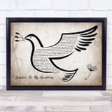 John Denver Sunshine On My Shoulders Vintage Dove Bird Song Lyric Quote Music Framed Print
