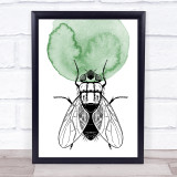 Watercolour Hand Drawn Insects House Fly Framed Wall Art Print
