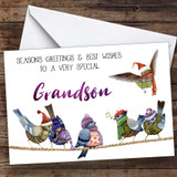 Cute Birds Very Special Grandson Personalised Christmas Card