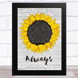 The Snuts Always Grey Script Sunflower Song Lyric Music Art Print