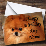 Pomeranian Puppy Dog Customised Birthday Card