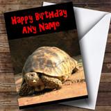 Tortoise Customised Birthday Card