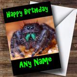 Tarantula Spider Customised Birthday Card