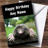 Funny Mole Customised Birthday Card