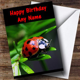 Ladybird Customised Birthday Card