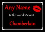 Chamberlain World's Sexiest Placemat
