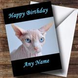 Blue Eyed Sphynx Cat Customised Birthday Card
