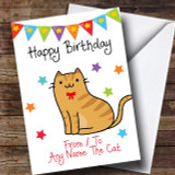 To From Pet Cat Ginger Tabby Customised Birthday Card