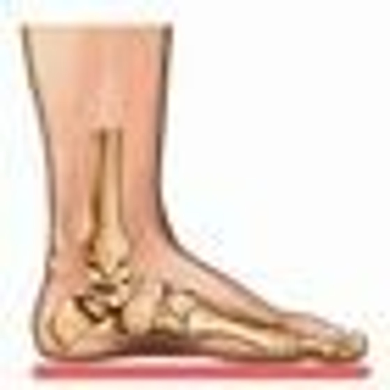 Best Shoes for Flat Feet and Fallen Arches