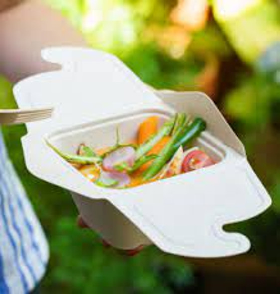 Sabert Rectangular Meal Box [PUL42050160] [500ml] (a pack of 300)