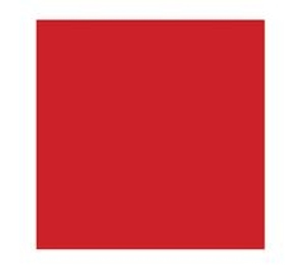 Wipe-Up Napkin Red 2ply [33x33cm] (a pack of 2000)