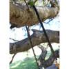 Humvee Pocket Chain Saw
