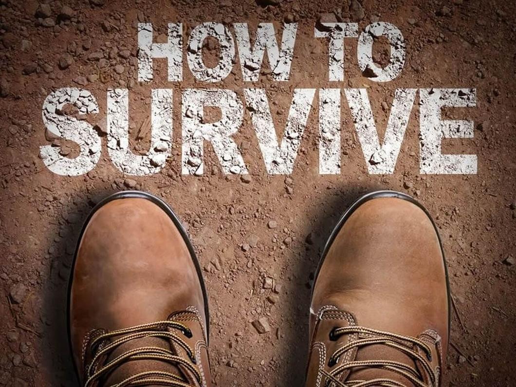 Beginner Emergency Survival Guide