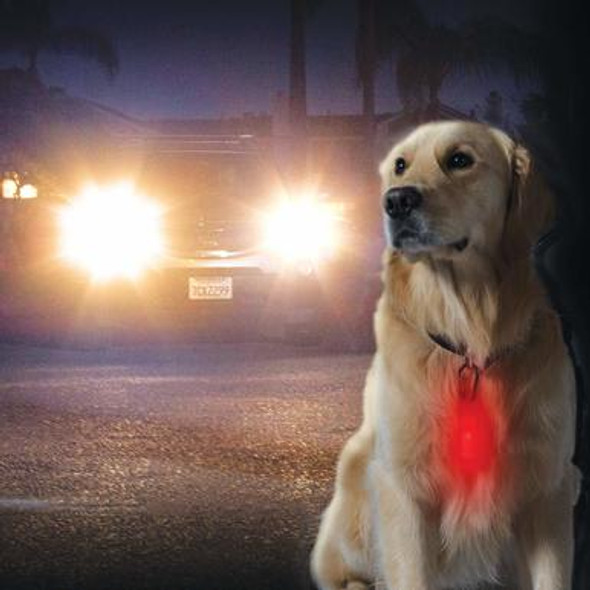 When going to a night stroll or doing a camping trip with our furry companions we have to look out for their safety just as well as ours! With this Night Walker Glow LED Pet Safety Clip Light we can keep our pets safe from harms away! This clip is made of silicon and has a easy Tap On/Off that can clip safely to a dog collar. This can even be used on Backpacks, tents, or guide wire for camp safety or survival.