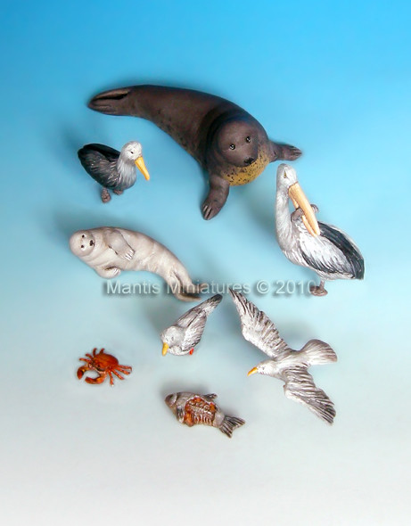 Animals - set 7 (water birds and seal)