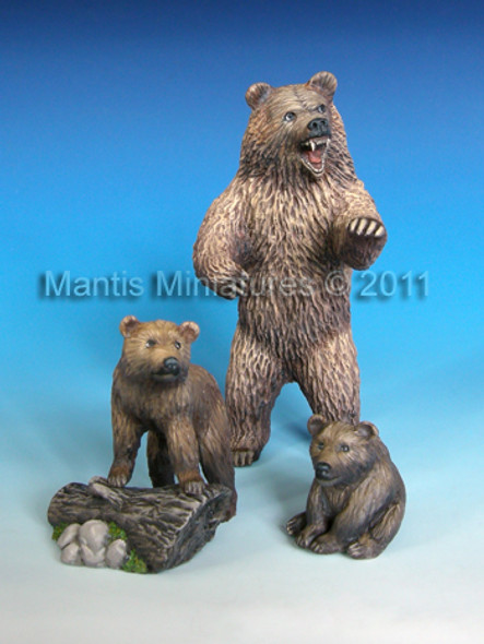 Animals - set 8 Bear and Cub