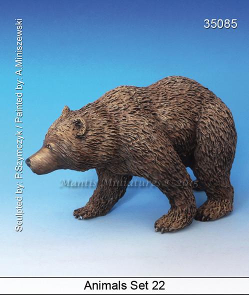Animals Set 22 - Bear